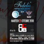 "Fidelio presenta ""Cluster Vibe"""