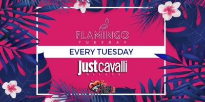 Martedì Just Cavalli Milano